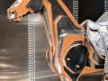Hermès à tire-d'aile   Photo_expo_34