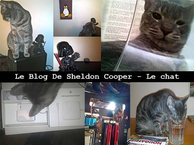 Le BLOG de Sheldon Cooper.